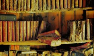 Dusty-bookshelf-001